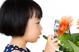 girl inspecting a flower