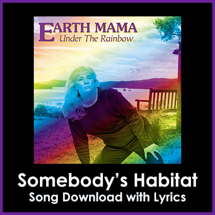 Somebody's Habitat Song Download with Lyrics