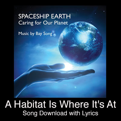 A Habitat is Where It's At Song Download with Lyrics
