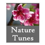 Nature Tunes: Download with Lyrics